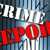April 22- April 28, 2019 La Mirada Crime Summary