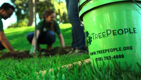 TREE PEOPLE TO PLANT 11,000 TREES IN LOCAL CITIES