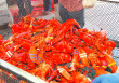 ORIGINAL LOBSTER FESTIVAL COMING TO LONG BEACH SEPT. 6-8
