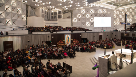 Orange County Catholic Diocese Will Reopen in Small Steps